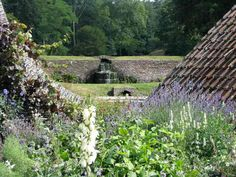 Hestercombe Garden