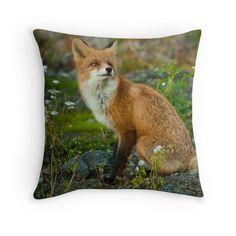 'Fox' Throw Pillow by June Åsheim Fox, Throw Pillows, Interior, Animals, Toss Pillows, Animales, Cushions, Indoor, Animaux