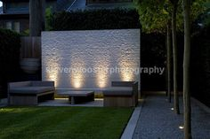 London garden (3) designed by Luciano Giubbilei photo - Steven Wooster #backYardIdeas #DIYPlants #OutdoorLiving #OutdoorIdeas #SpringIdeas  #Summer2015 #CoolPlants RealPalmTrees.com