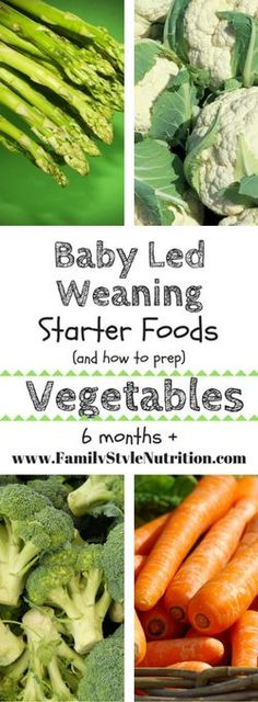 Baby Led Weaning Starter Foods – Family Style Nutrition The BEST starter foods for your baby using the Baby Led Weaning approach to infant feeding and all the info on how to prep them! From FamilyStyleNutrit… Baby Led Weaning First Foods, Weaning Foods, Baby First Foods, Baby Weaning, Baby Led Weaning Recipes 6 Months, Weaning Toddler, Nutrition Education, Nutrition Month, Nutrition Activities