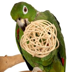 Giant Munch Ball - Woven Willow Chew Toy for Parrots Large woven natural vine ball for your parrot to chew and unravel.