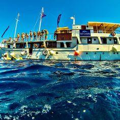Tuna is so photogenic isn't she? #sailcroatia #croatia