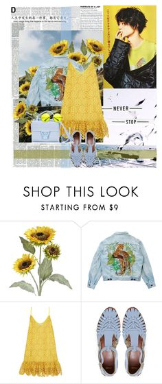 """you are..."" by ani-onni on Polyvore featuring Pier 1 Imports, Levi's, Alexis, ASOS and Coccinelle"