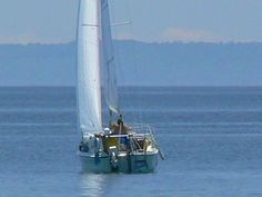 Sailing out of Oakville Harbour Sailing, Boat, Sports, Candle, Hs Sports, Dinghy, Boats, Sport, Ship