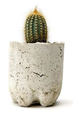 Sweet little cupcake pots in 'Concrete Garden Projects' - latimes.com