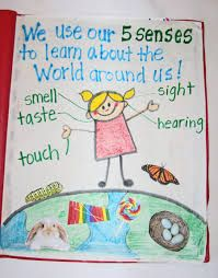 grade one poems senses - Google Search