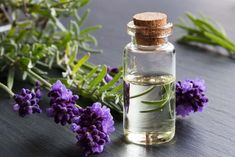 There's no question about it: stress is a part of life, and some amount of stress is healthy and essential. However, even though we know these risks, many of us are still left feeling like stress and worry are inescapable. That's where essential oils come in. Essential oils provide the healing properties of the plants […] The post Essential Oils to Alleviate Stress and Anxiety appeared first on Healthy Living Daily.