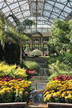 AAS Display Garden Longwood Gardens, Kennett Square, PA