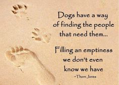 Dogs fill emptiness
