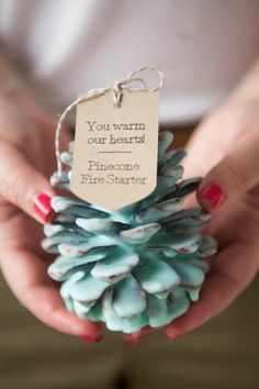 Pinecone Fire Starter Makes A Great Gift