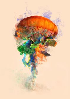 Poster | JELLYFISH INK von Dániel Taylor | more posters at http://moreposter.de