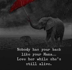 Nobody has your back like your mama.love her while she's still alive love quotes life mom quotes about life life images quotes about mom Wisdom Quotes, True Quotes, Words Quotes, Quotes To Live By, Best Quotes, Motivational Quotes, Inspirational Quotes, Awesome Quotes, Quotes Quotes