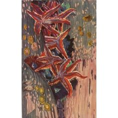 Check out this item at One Kings Lane! Starfish by Mathurin Meheut, 1924