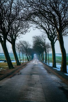 Stay on these roads by Fredrik Palm