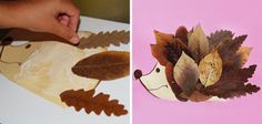 DIY hedgehog tinker with leaves - DIY - Do it yourself - Selber Machen - Europaletten - Welcome Crafts Easy Fall Crafts, Fall Crafts For Kids, Craft Activities For Kids, Preschool Crafts, Diy For Kids, Diy And Crafts, Hedgehog Craft, Cute Hedgehog, Leaf Crafts