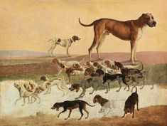 AGASSE, Jacques-Laurent Study of Dogs c. 1803 Oil on canvas, 29 x 40 cm Private collection