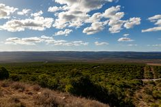 Cloudy Looks Out - Addo Landscape Cloudy Looks Out - Addo is a town in Sarah Baartman District Municipality in the Eastern Cape province of South Africa. Region east of the Sundays River, some 72 km northeast of Port Elizabeth.