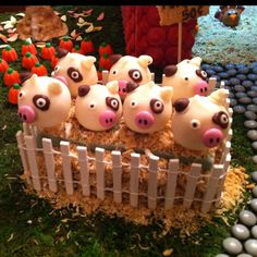 Farm cake pops! Might have to use this for a future birthday party!