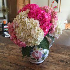 Friday Flowers, October 2015