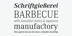 Ethos Font by Fonts with Love. Ethos is a contemporary serif font family by Fonts With Love. It comes in 36 fontstyles with true italics and a huge bunch of opentype features like small caps, ligatures, nominators and denominators, fractions and many more.