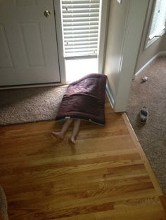 These Kids Are Adorably Awful at Hide and Seek - Just a Dog Bed