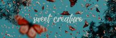 Sweet Creature Header from twitter Twitter Header Quotes, Cute Twitter Headers, Header Tumblr, Twitter Banner, Twitter Backgrounds, Twitter Layouts, Facebook Quotes, Twitter Header Hipster, Twitter Header Aesthetic