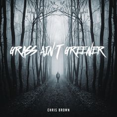 """Grass Ain't Greener"" by Chris Brown #Music"
