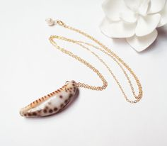 Hawaiian Cowrie Shell 14k Gold Filled Chain Necklace by Tasha808