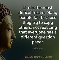 New quotes life buddha buddhism Ideas New Quotes, Wisdom Quotes, Words Quotes, Quotes To Live By, Life Quotes, Sayings, Happiness Quotes, Success Quotes, Qoutes