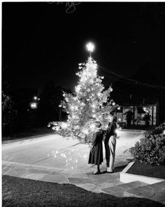 Night Lighting of Christmas Tree in swimming pool, 5745 Hill Oak Drive in Hollywood Hills, 1954. :: Night Lighting of Christmas Tree in swimming pool, 5745 Hill Oak Drive in Hollywood Hills, 1954. :: Los Angeles Examiner Collection, 1920-1961. http://digitallibrary.usc.edu/cdm/ref/collection/p15799coll44/id/79449