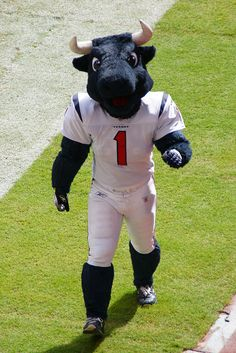 Houston texans toro | Recent Photos The Commons Getty Collection Galleries World Map App ...