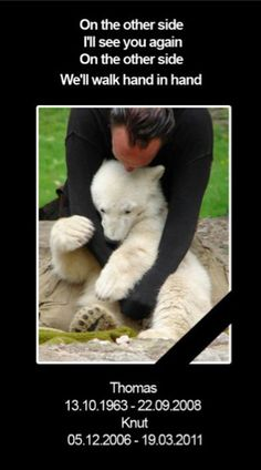 Thomas Dörflein and polar bear Knut at the Berlin Zoo - I will never forget You.......