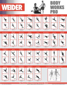 weider workout guide | Gym Exercise Chart Home Routine Equipment Weider