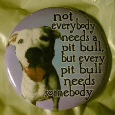 not everyone needs a pit bull but every pit bull
