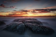 Фотография Sea Shells on the rock автор Bobby Joshi Photography на 500px