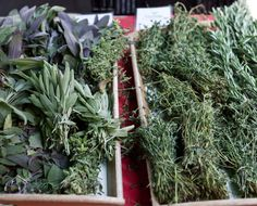 Herb guide: The essential guide to our favorite fresh herbs - The Chalkboard