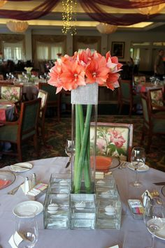 Coral amaryllis centerpiece! Love the bling wrap and all the candles!