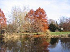 Stadt Sindelfingen: Parks