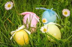 group of easter eggs in a grass field with daisies