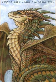 "Bronze Dragon - ""A dragon sits on a cliff in the mountains to watch the sun set."" Art of Dark Natasha."
