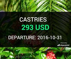 Flight from Seattle to Castries by jetBlue #travel #ticket #flight #deals   BOOK NOW >>>