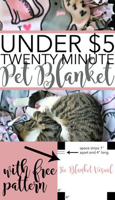 Under $5 Pet Blanket