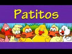 PATITOS -  CANCIONES INFANTILES - con Letra