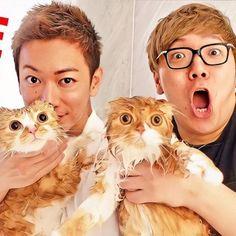 Takeru Sato, Eye Candy, Around The Worlds, Princess Zelda, Guys, Instagram, Fictional Characters, Youtube, Fantasy Characters
