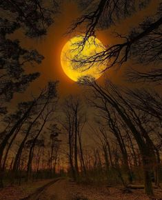Under The Same Moon, Special Effects, Planet Earth, Great Photos, Wonders Of The World, Amazing Photography, Planets, Beautiful Places, Sky