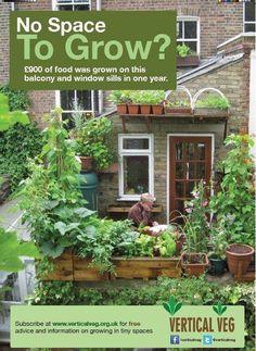The urban farm & garden