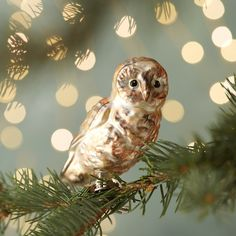 """Hand-crafted in Poland, this delicate owl perches among the boughs of the holiday tree.- Glass, metal clip- Indoor use only- Clip: 0.4""""W- Handmade in Poland4.5""""H, 2.25""""W"""