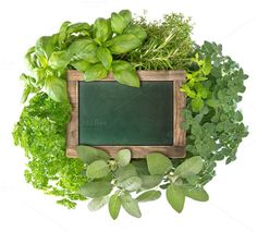 Fresh herbs with chalkboard by LiliGraphie on Creative Market