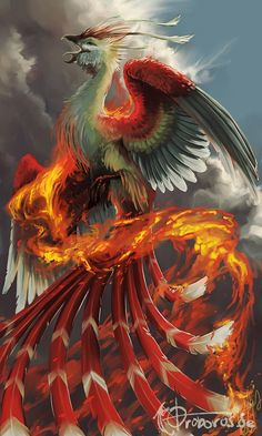 Vermilion bird which is different from a Phoenix, I think Phoenix Artwork, Phoenix Wallpaper, Phoenix Images, Phoenix Painting, Mythical Creatures Art, Mythological Creatures, Magical Creatures, Mythical Birds, Phenix Tattoo