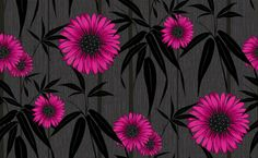 Navarra Almeria (M0672) - Crown Wallpapers - Almeria - A stunning Sunflower in four different shades and an embossed effect. Shown here in vibrant cherry pink on black. Please request a sample for true colour match.